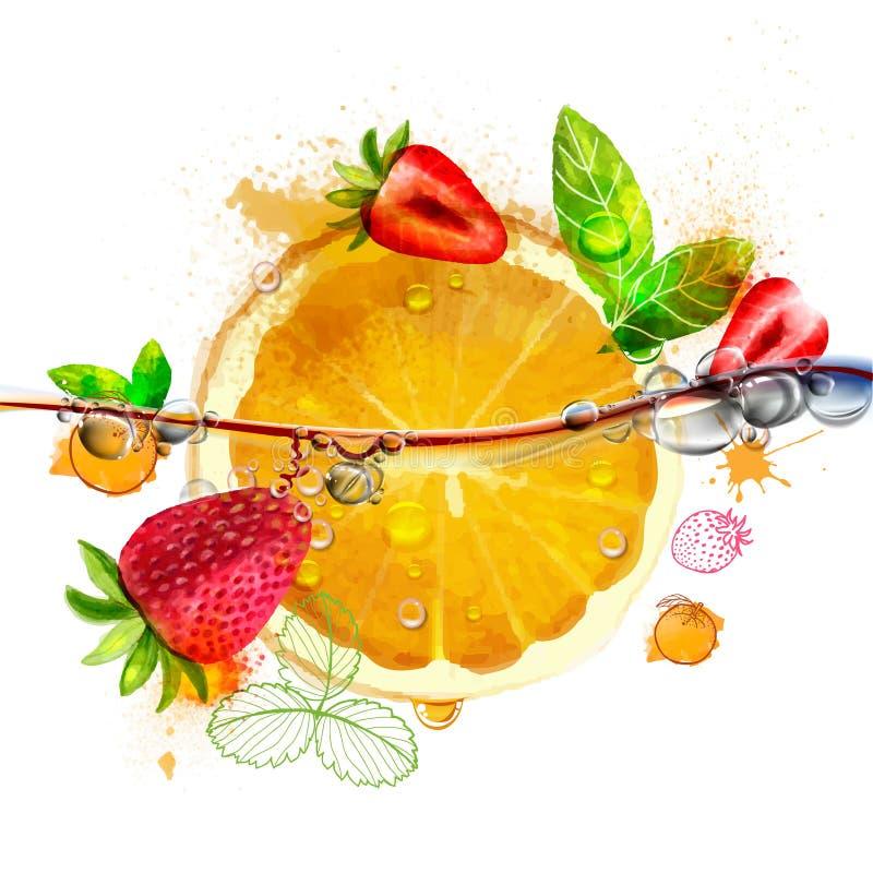 яркий плодоовощ апельсина и клубники бесплатная иллюстрация