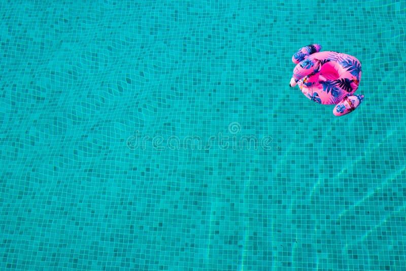 Яркий раздувной фламинго перемещаясь в бассейн с синью и чистую воду с волнами стоковая фотография