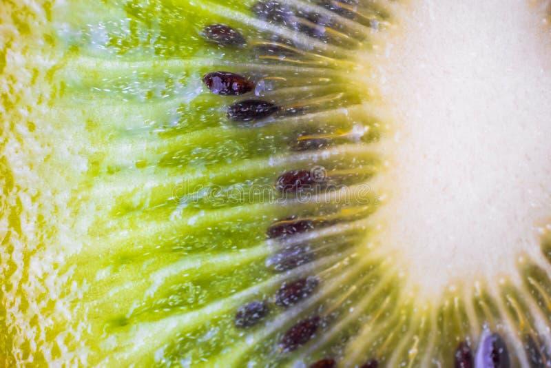Яркий сочный зеленый отрезок конца-вверх плода кивиа стоковое изображение