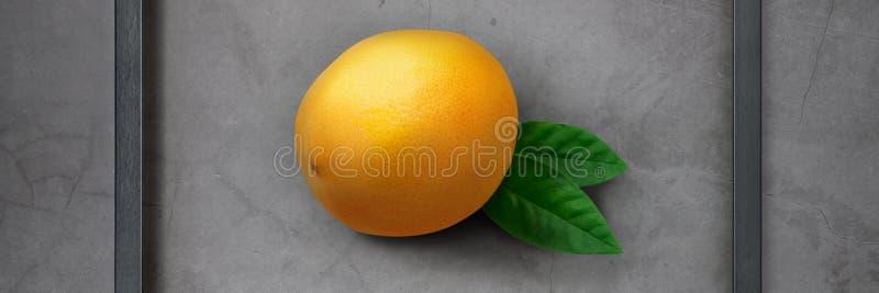 Яркий, сочный свежий лимон в деревянной рамке на серой предпосылке цемента стоковые изображения
