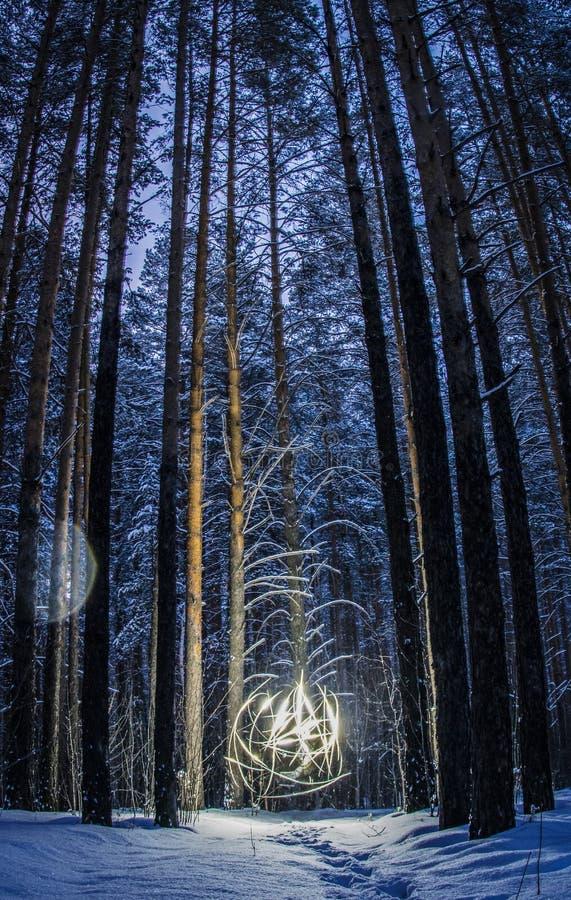Яркий шарик света освещая расчистку в древесинах стоковое фото