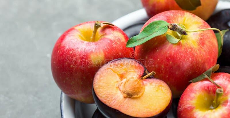 Яркое зрелое красное яблоко с зеленым цветом стержней выходит сливы уменьшанные вдвое темнотой на белую плиту эмали Почерните кам стоковые изображения rf