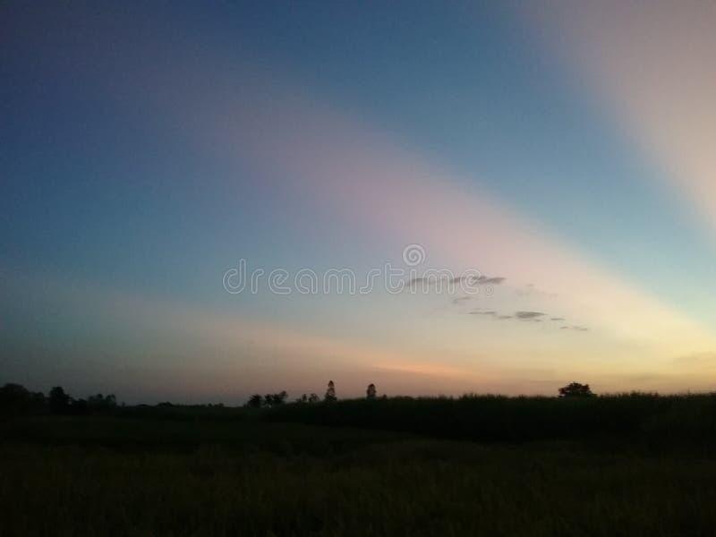 Яркое небо утра стоковое изображение