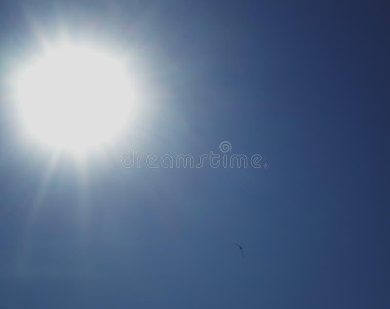 Яркое солнце с лучами в голубом небе стоковые изображения rf