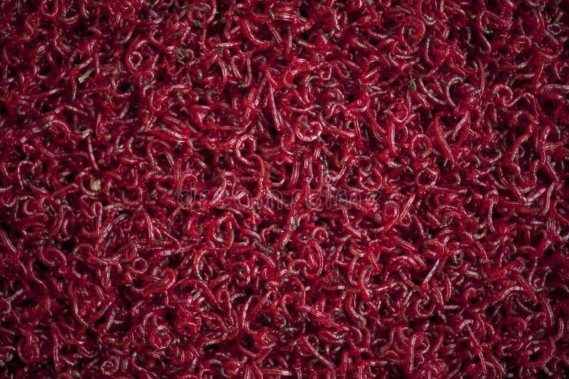 ярк покрашенный красный цвет стоковые фотографии rf