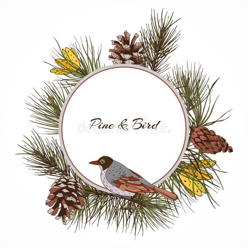 Download Ярлык ветви сосны птицы иллюстрация вектора. иллюстрации насчитывающей икона - 40586066