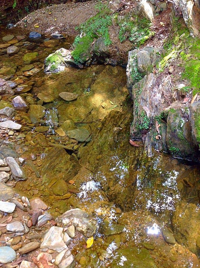 ясная вода стоковая фотография rf