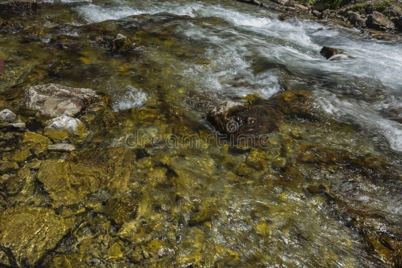Ясное и быстрое река горы стоковое фото rf