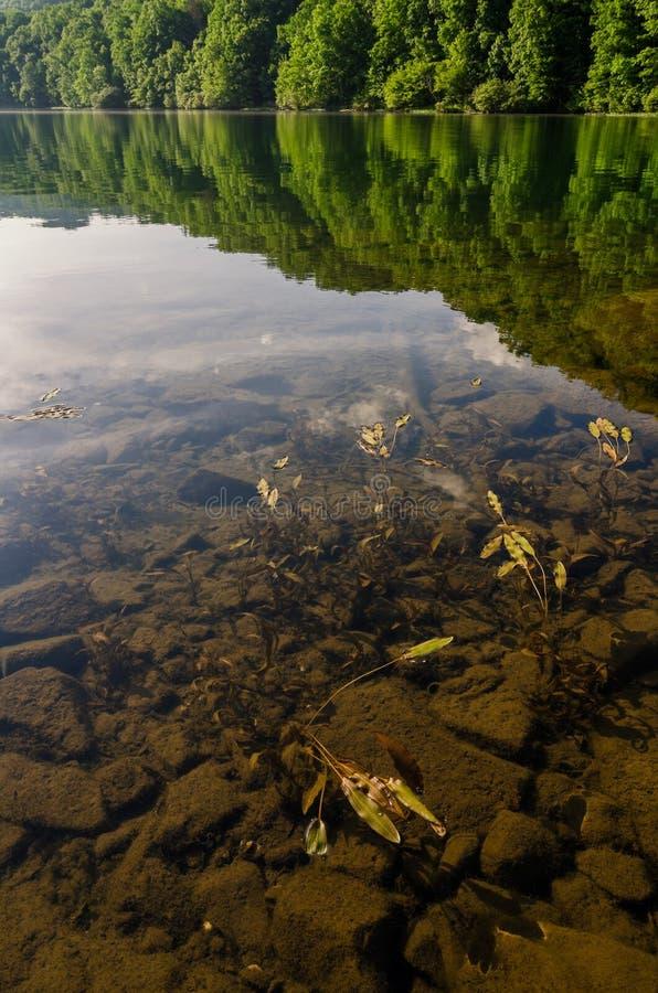 Ясное озеро гор, южные Аппалачи стоковые изображения rf