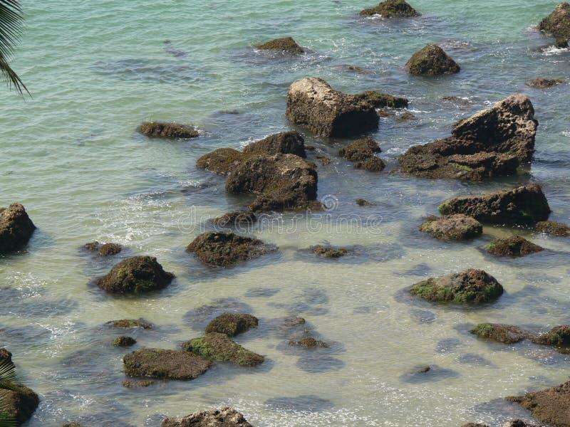 ясные воды goa стоковое фото