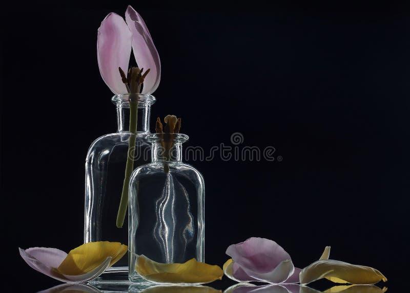 Ясные кристаллические бутылки с тюльпанами стоковая фотография rf