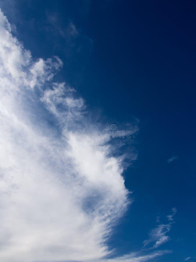 Ясные облака выглядеть как лошадь моря стоковые фото