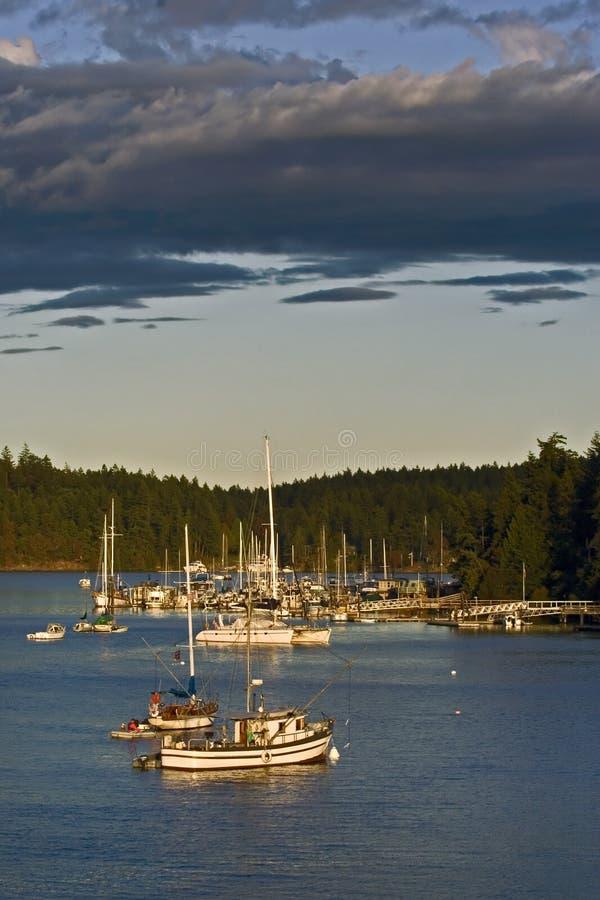 яхты залива стоковое фото rf