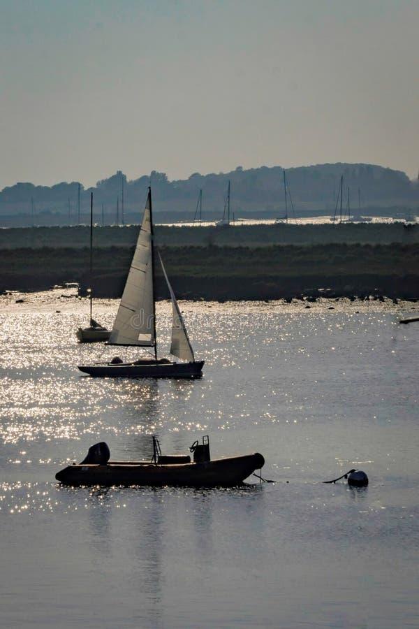 Яхты плавая на заходе солнца стоковое фото rf