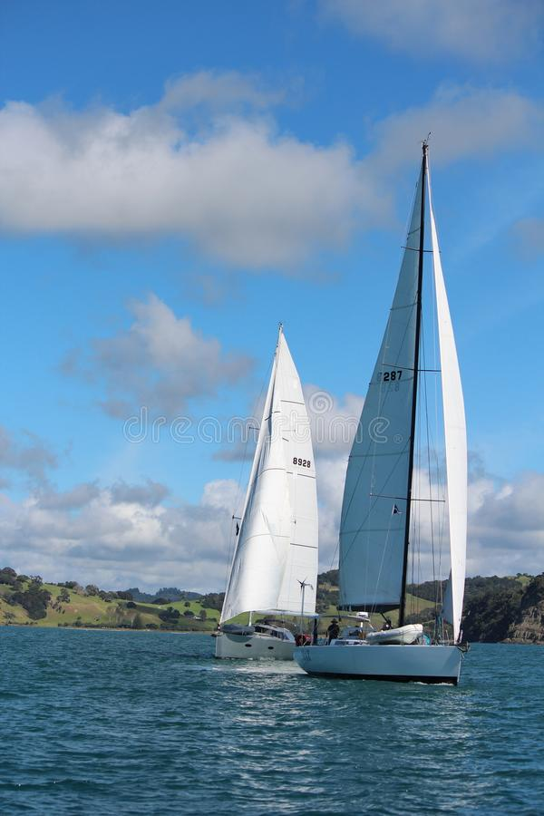 Яхты плавая на спокойных морях стоковые изображения rf