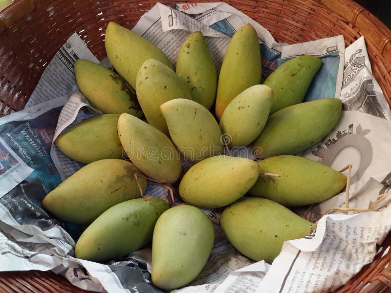 Ячмень манго стоковая фотография rf