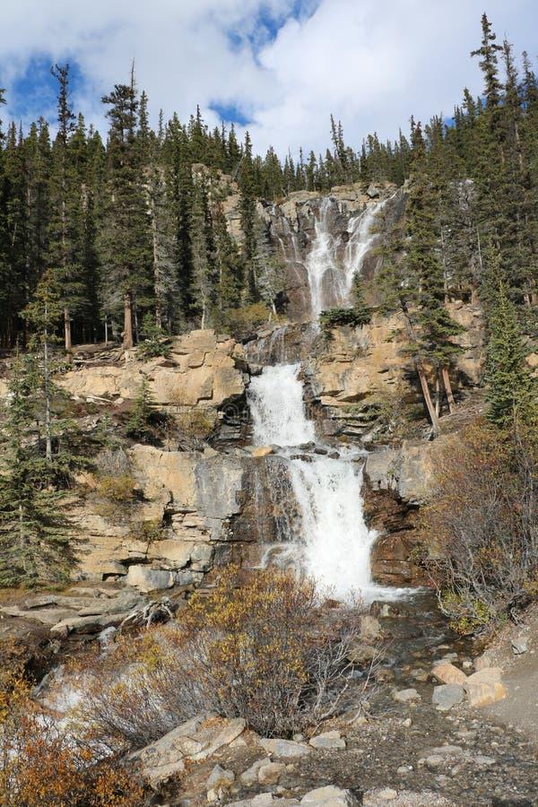 яшма icefields падений alberta banff Канады размещала с путать parkway стоковые фото