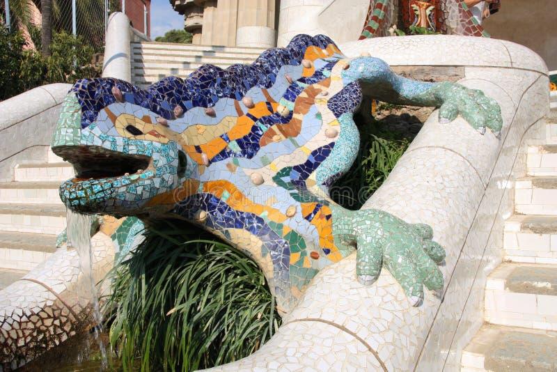 ящерица barcelona стоковые фото