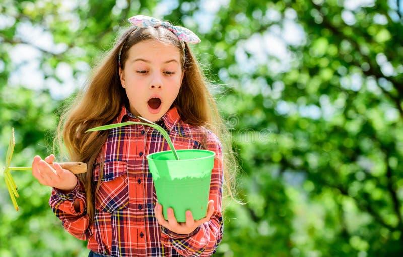 Я люблю садовничать окружающая среда экологичности o ребенк маленькой девочки в стране деревни весны леса r стоковое изображение