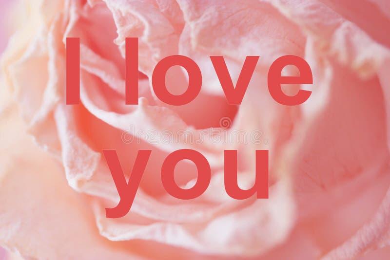 я тебя люблю стоковые изображения