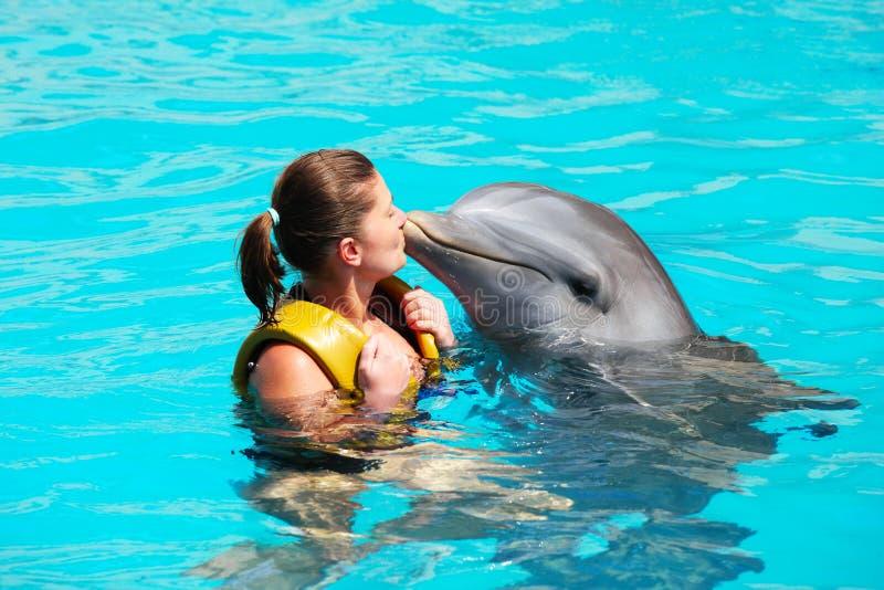Я люблю дельфинов! стоковые изображения rf