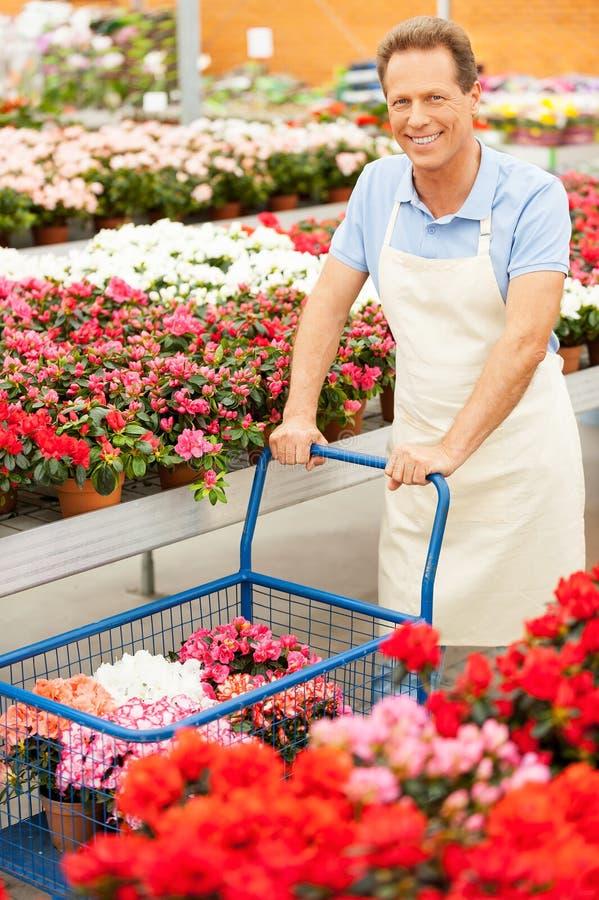 Download Я люблю цветки стоковое изображение. изображение насчитывающей florist - 40586351