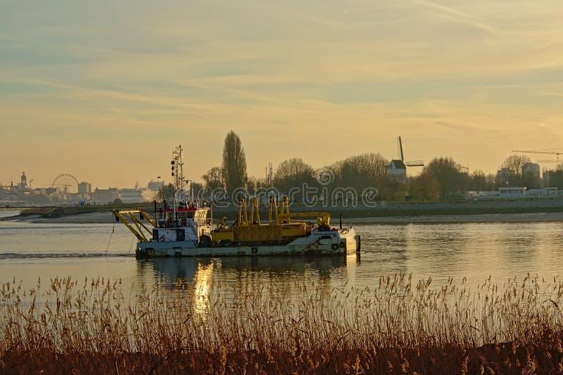 '码头Coecke'在河斯海尔德河的污染控制船 免版税库存图片