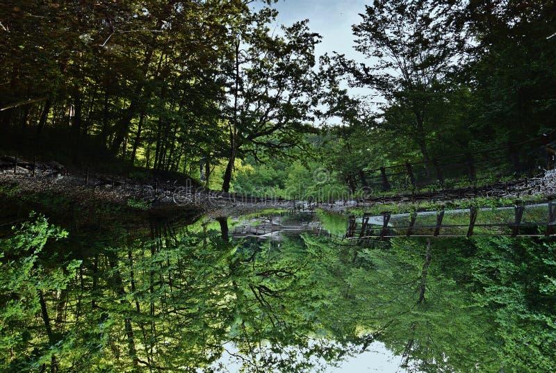 '红色'湖在索瓦塔,罗马尼亚 图库摄影