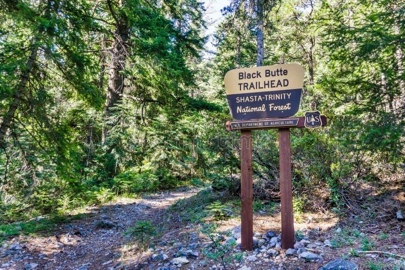 '黑小山'路径源头在沙斯塔三位一体国家森林,锡斯基尤县,加利福尼亚北部里 图库摄影