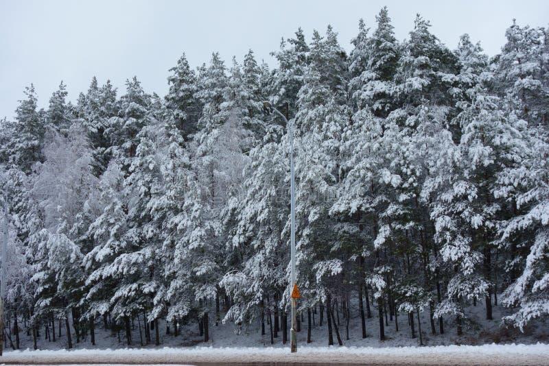 'Guárdese señal de tráfico de la nieve 'contra un banco de árboles nevados imagenes de archivo