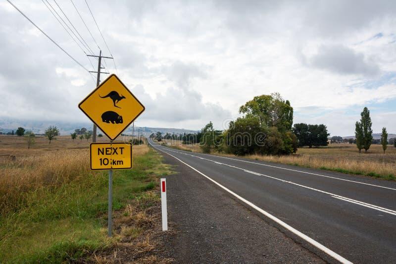 'Kangaroo and Wombat Crossing. 10km' sign in Australia stock photo