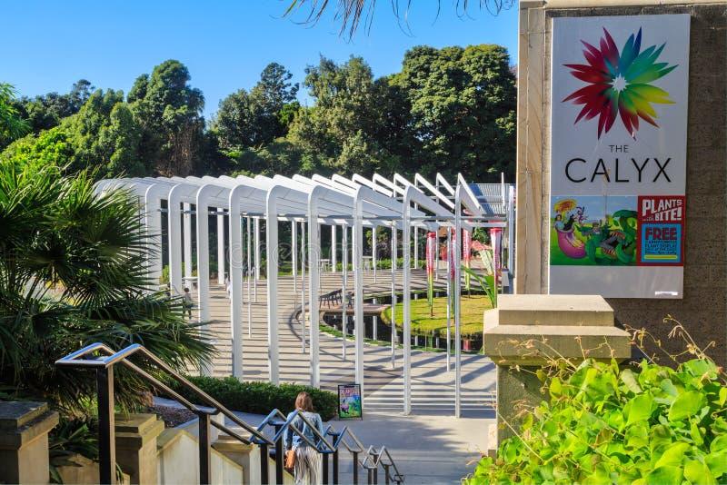'Der Kelch ', königlicher botanischer Garten, Sydney, Australien stockbild