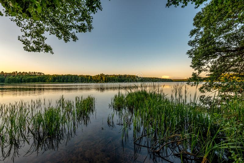 'E de BiaÅ de lac entouré par des forêts de pin, Pologne photographie stock libre de droits