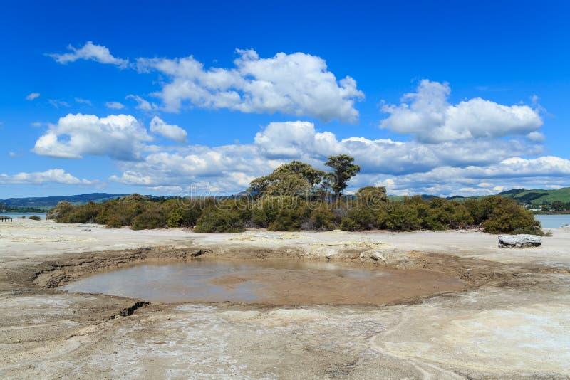 'Het Lachgaspool van Cameron 'op het thermische gebied rond Meer Rotorua, Nieuw Zeeland stock foto's
