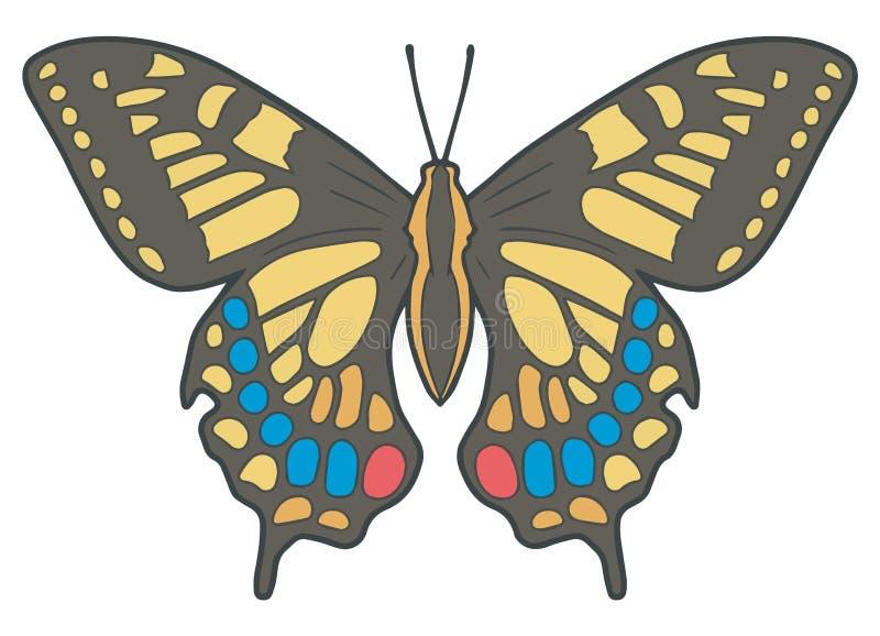 'Papilio Machaon 'of 'de vlinder nauwkeurige vectorillustratie Oude van Wereldswallowtail ' vector illustratie