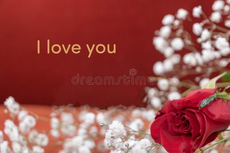 """""""Я тебя люблю """"на день Валентайн стоковое фото"""