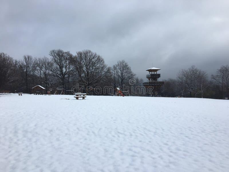 ‰ De à gervölgy en invierno cerca de ` del gertetÅ del ‰ de à imagen de archivo