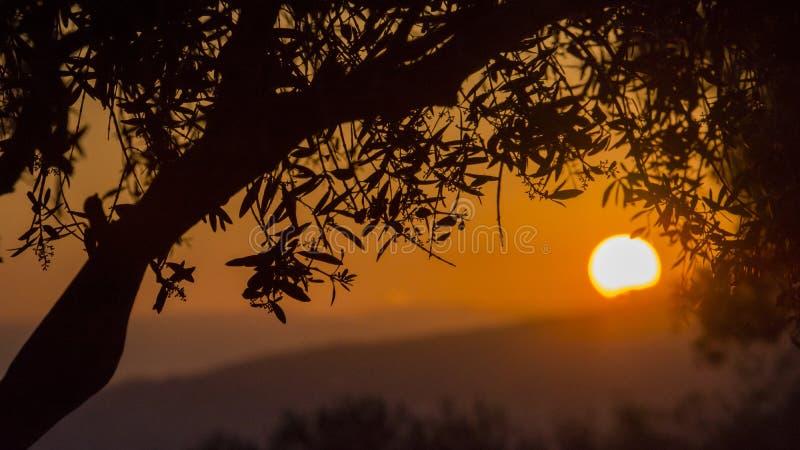 ‰ Del ¼ del sunsetï di ˆAcropolis del ¼ del cityscapeï di Atene immagini stock libere da diritti