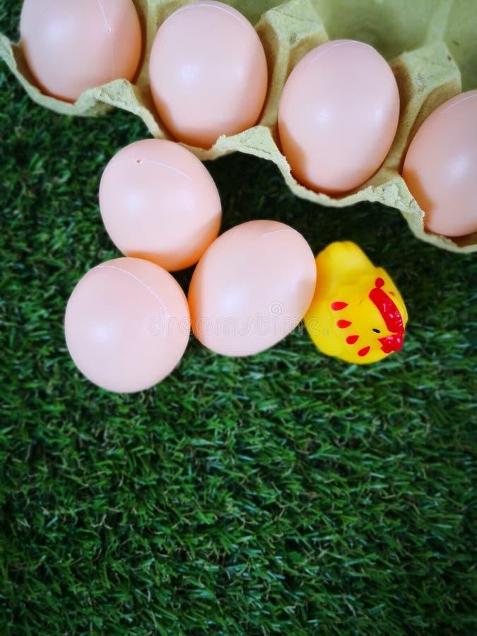 ‹Del chicken†del ‹del little†del ‹del and†del ‹de Egg†imagen de archivo