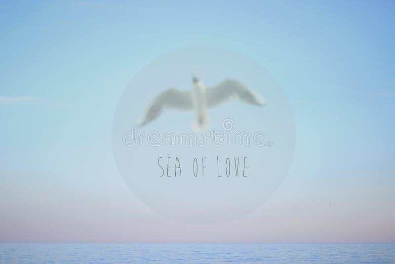 ‹För †för havsav förälskelse för ‹för †royaltyfri foto