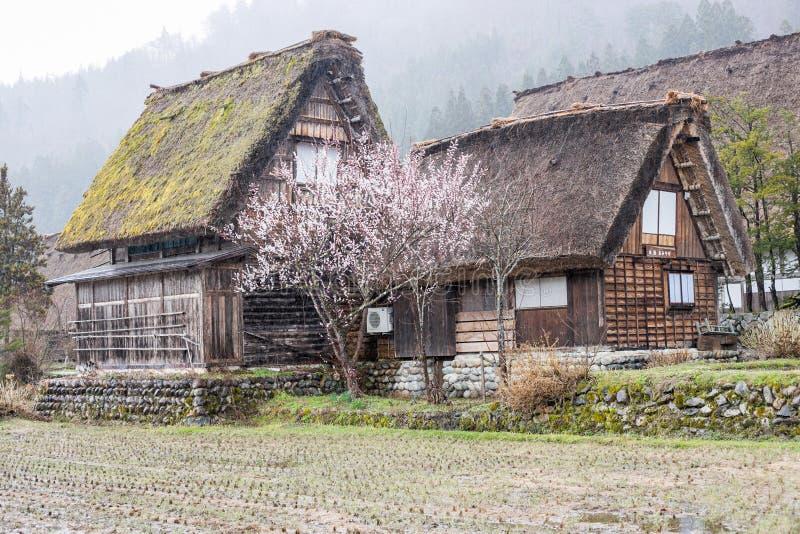 """€ de Gifu, Japón """"10 de abril de 2019: Pueblo histórico japonés de Shirakawago en el distrito de Gifu imagen de archivo libre de regalías"""