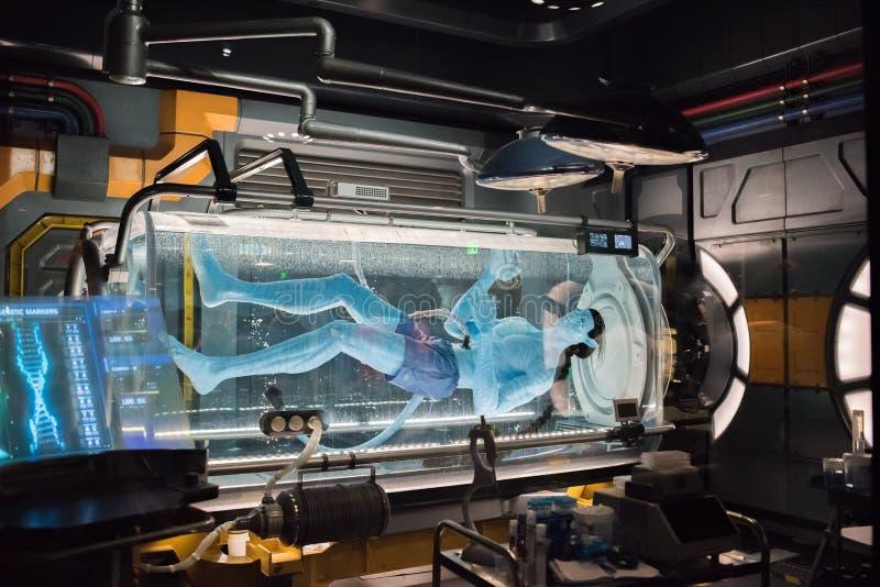 """€ de Pandora """"el mundo de Avatar en el reino animal en Walt Disney World fotografía de archivo libre de regalías"""