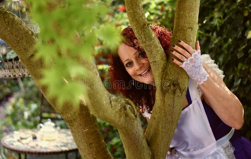 《爱丽丝梦游仙境》 库存照片