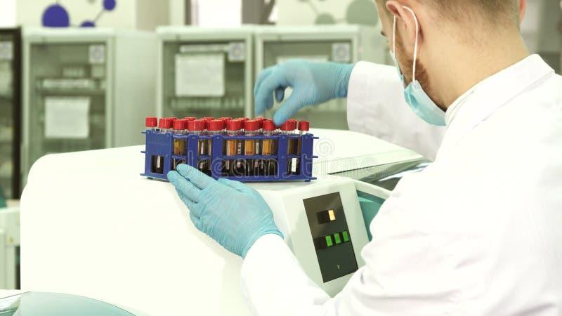 一个专业化验员在装载他们前检查其中每一支管入实验室centfruge 库存照片