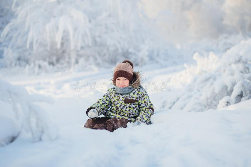 一个五岁的男孩的画象在冬天多雪的森林里 图库摄影