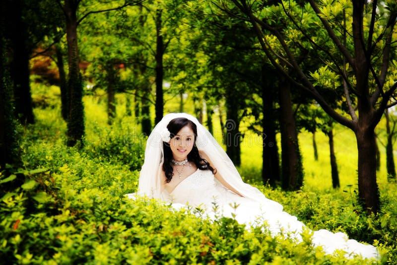 一个亚裔女孩,休息在森林的一个美丽的新娘 库存图片