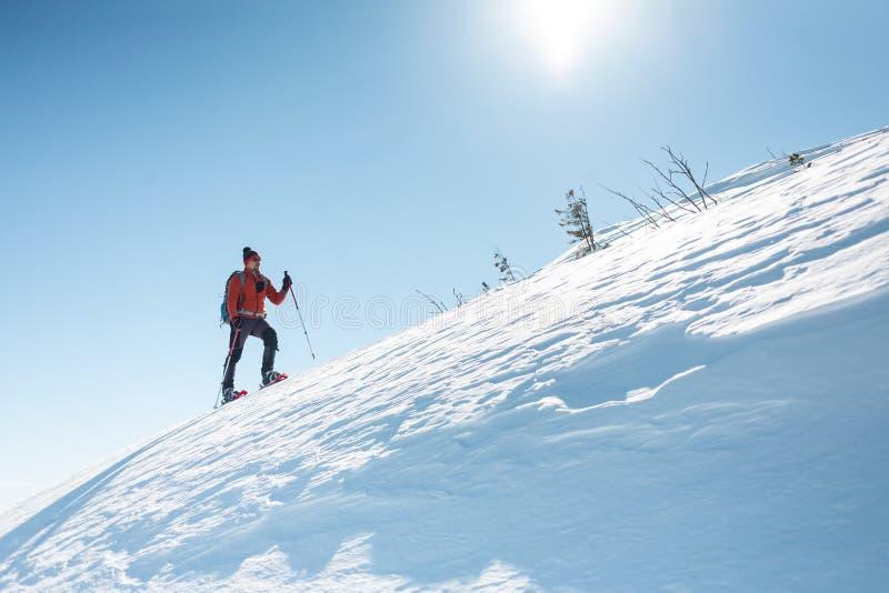 一个人在山的上面上升 免版税库存图片