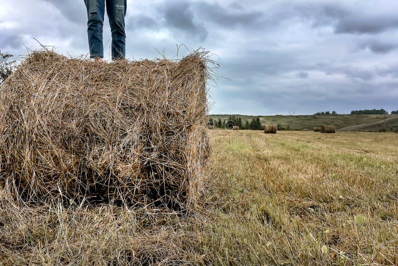 一个人在干草堆站立 免版税库存照片