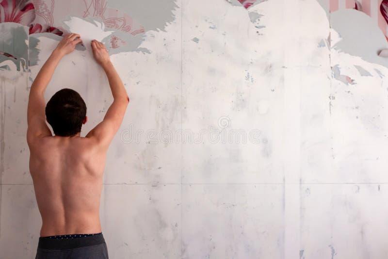 一个人撕下墙纸,去除墙纸从墙壁与小铲,更新墙壁修理的过程  免版税库存图片