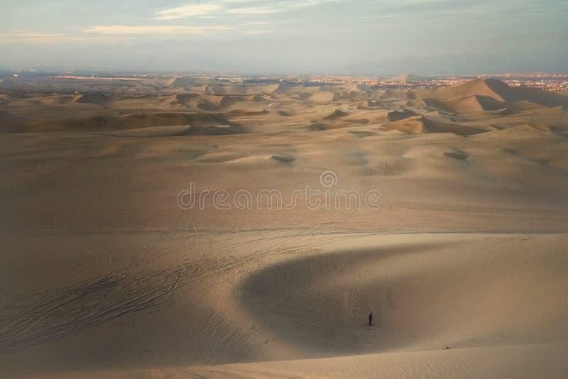 一个人演奏sandboarding在Huacachina点心, Ica,秘鲁 库存图片